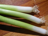 Nabuka Bunching Onion